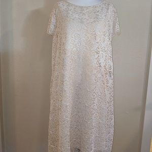 Marina Dresses 18W Taupe Lace Sheath Dtess